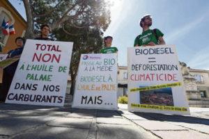 biocarburants-huile-palme-liaisons-dangereuses