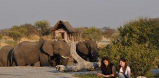 a05cd48df53f3 NSE installe un microréseau photovoltaïque dans un complexe hôtelier du  Botswana
