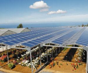 enr-france-plan-solaire-ombre-lumiere