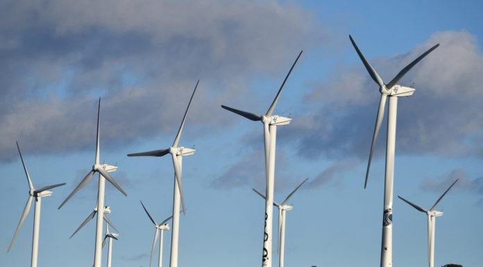 france-energies-renouvelables-allemagne