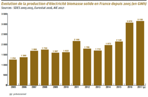 biomasse solide france 1 2 metropole - Les Smart Grids
